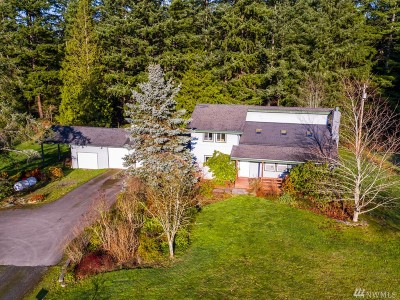 Whatcom County Single Family Home For Sale: 4620 Totem Trail