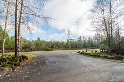 Eatonville Residential Lots & Land For Sale: 39028 32nd Ave E