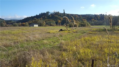 Grays Harbor County Residential Lots & Land For Sale: 535 Garrard Creek Rd