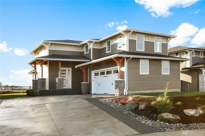 Ferndale Single Family Home For Sale: 6075 Monument Dr