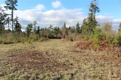 Residential Lots & Land For Sale: 7922 175th Trail SW