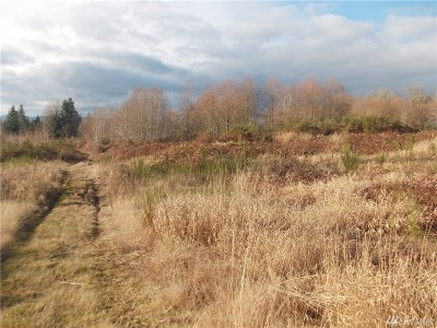 Residential Lots & Land For Sale: 3528 54th Ave SW