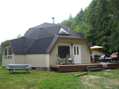 Centralia Single Family Home For Sale: 290 Jones Rd