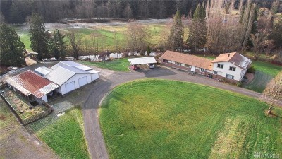 Whatcom County Single Family Home For Sale: 3941 W Loomis Trail Rd.