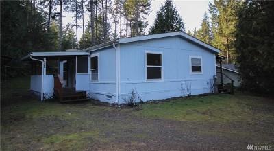 Mason County Single Family Home For Sale: 231 E Balbriggan Rd