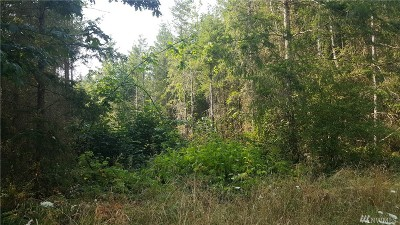 Yelm Residential Lots & Land For Sale: 14247 Rainier View Dr SE