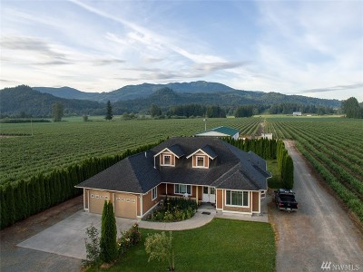 Whatcom County Farm For Sale: 9430 Sumas Road