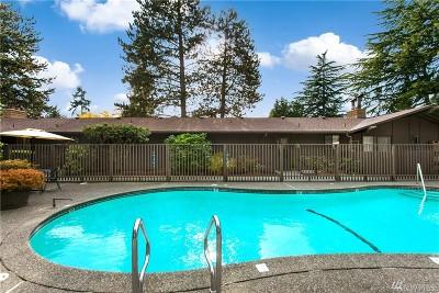 Bellevue WA Rental For Rent: $2,750