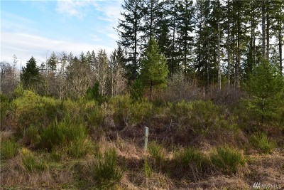 Residential Lots & Land For Sale: 170 W Salmonberry Dr