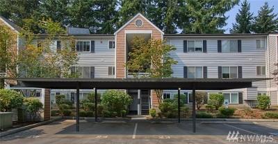 Bellevue WA Rental For Rent: $2,000