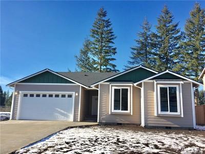 Single Family Home For Sale: 122 Carver Walk SE