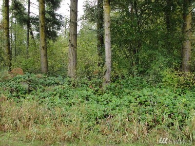 Eatonville Residential Lots & Land For Sale: 38419 Mountain Hwy E