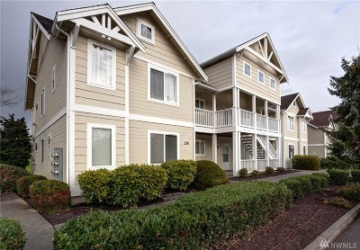 Lynden Condo/Townhouse Sold: 236 W Maberry #101