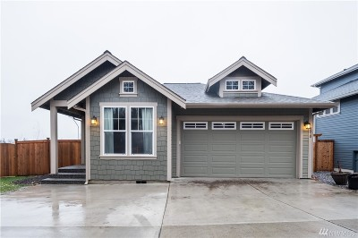 Bellingham Single Family Home For Sale: 4310 Foothills Ct