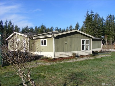 Single Family Home For Sale: 12603 Reo Rd SE