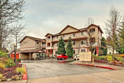 Snohomish County Condo/Townhouse For Sale: 14819 29 Ave W #L203