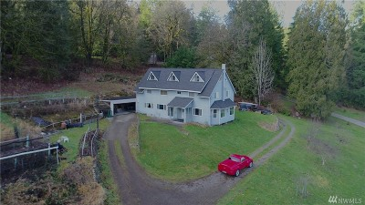 Duvall Single Family Home For Sale: 17007 W Snoqualmie Valley Rd NE