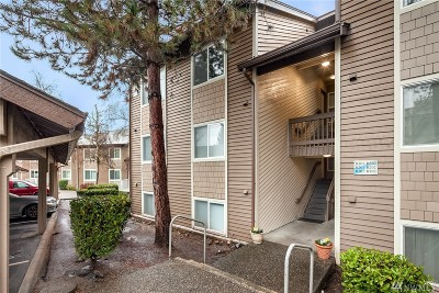 Issaquah Condo/Townhouse For Sale: 202 Mountain Park Blvd SW #B302
