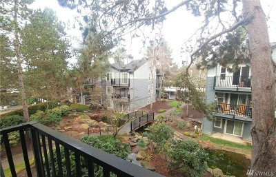 Kirkland Condo/Townhouse For Sale: 11112 NE 124th Lane #D213