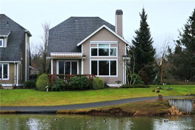 Lynden Single Family Home For Sale: 549 E Maberry Dr