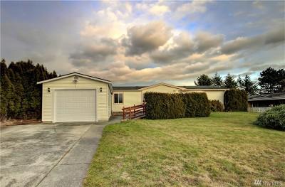 Blaine Single Family Home For Sale: 8356 Sea Breeze Ct