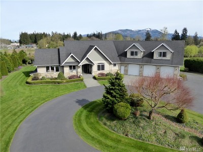 Skagit County Single Family Home For Sale: 10437 Ridge Place