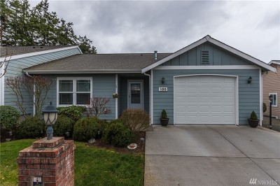 Oak Harbor Single Family Home For Sale: 195 NW 12th Court