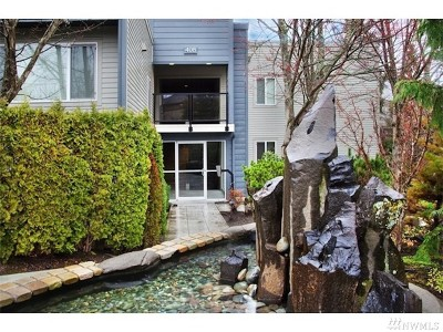King County Rental For Rent: 408 2nd Ave S #103