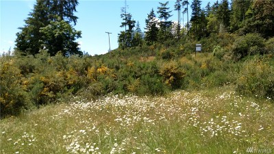 Pierce County Residential Lots & Land For Sale: 9222 Cramer Road KPN