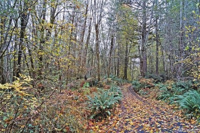 Shelton WA Residential Lots & Land For Sale: $89,500