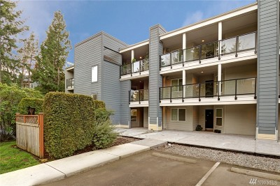 Condo/Townhouse Sold: 410 2nd Ave S #205