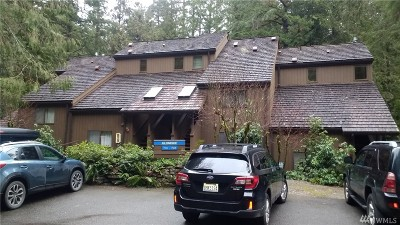 Glacier Condo/Townhouse Sold: 10500 Mt Baker Hwy #705