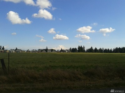 Yelm Residential Lots & Land Contingent: 9306 Mountain View Rd SE