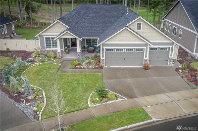 Lacey Single Family Home Contingent: 9014 Bristonwood Dr NE
