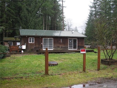 Whatcom County Single Family Home For Sale: 8475 Golden Valley Rd