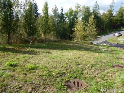 Sedro Woolley Residential Lots & Land For Sale: 450 Longtime Lane