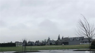 Lynden WA Residential Lots & Land For Sale: $375,000