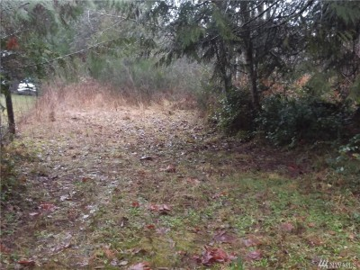 Shelton WA Residential Lots & Land Sold: $75,000