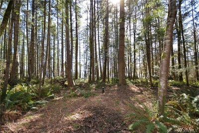 Residential Lots & Land For Sale: 999 Gustavsen Rd