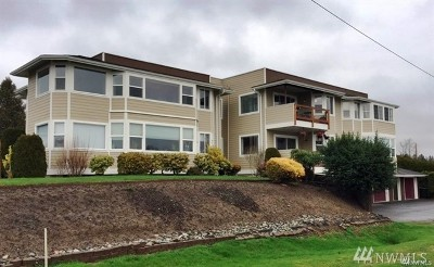 Whatcom County Condo/Townhouse For Sale: 1504 Peace Portal Dr