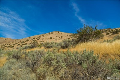 Chelan, Chelan Falls, Entiat, Manson, Brewster, Bridgeport, Orondo Residential Lots & Land For Sale: Cap Riste Outlook