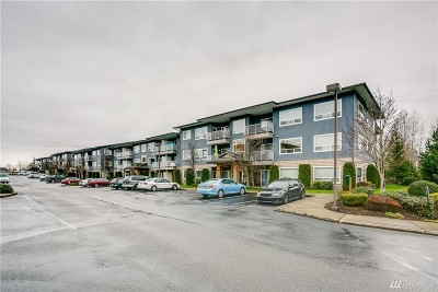 Bellingham Condo/Townhouse For Sale: 500 Darby Dr #F30