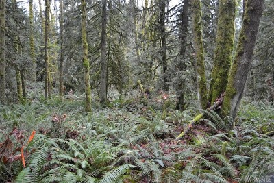 Redmond Residential Lots & Land For Sale: 2 290th Wy NE