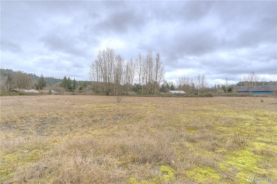 Residential Lots & Land For Sale: 610 Old Pacific Hwy SE