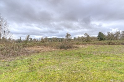 Residential Lots & Land For Sale: 630 Old Pacific Hwy SE