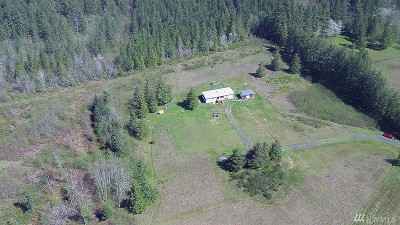 Chehalis Single Family Home For Sale: 1175 Centralia Alpha Rd
