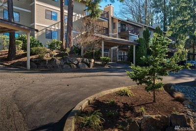King County Condo/Townhouse For Sale: 412 10th St #B301