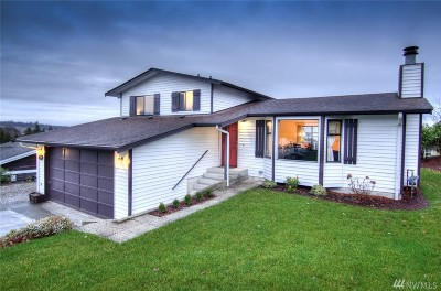 Blaine Single Family Home For Sale: 8074 Niska Rd