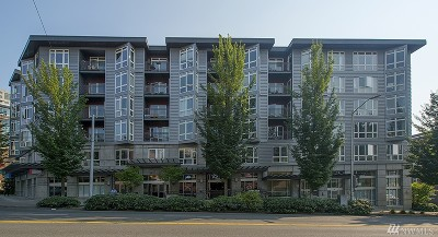 Condo/Townhouse Sold: 159 Denny Wy #613