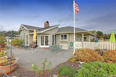 Skagit County Single Family Home For Sale: 124 Lummi Circle